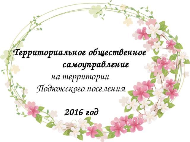 Территориальное общественное самоуправление на территории Подюжского поселения 2016 год