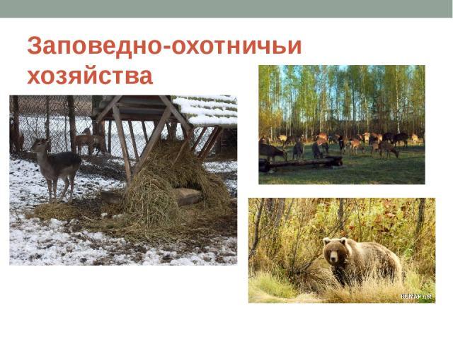 Заповедно-охотничьи хозяйства