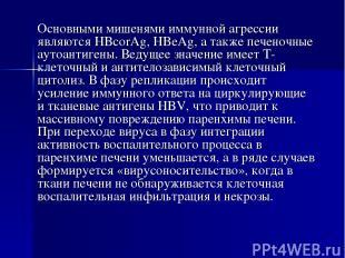 Основными мишенями иммунной агрессии являются HBcorAg, HBeAg, a также печеночные