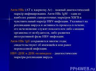 Анти-HBc (АТ к ядерному Аг) – важный диагностический маркёр инфицирования. Анти-