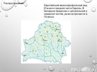 Распространение: Европейский мезоксерофильный вид. Южная и средняя части Европы.