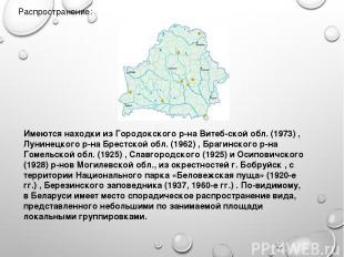 Распространение: Имеются находки из Городокского р-на Витеб ской обл. (1973) , Л