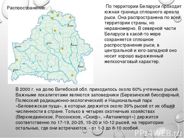 Распространение: По территории Беларуси проходит южная граница сплошного ареала рыси. Она распространена по всей территории страны, но неравномерно. В северной части Беларуси в какой-то мере сохраняется сплошное распространение рыси, в центральной и…