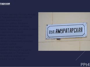 Ул. Амуратарская Куда ближе к центру города, между улицей Тимирязева и проспекто