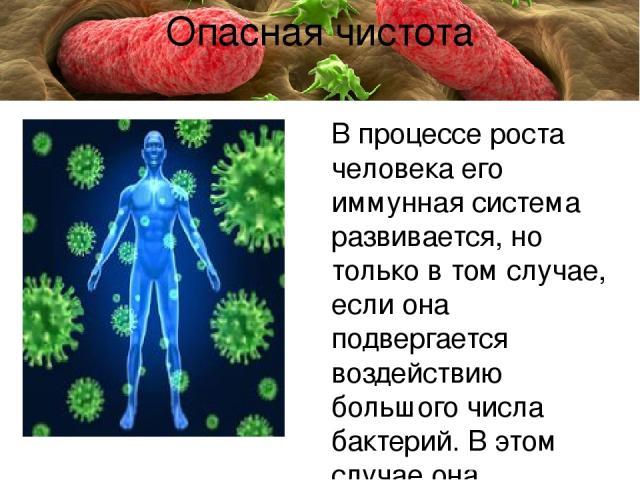 В процессе роста человека его иммунная система развивается, но только в том случае, если она подвергается воздействию большого числа бактерий. В этом случае она вырабатывает реакцию и способна контролировать воспаление. Чем гигиеничнее среда вокруг …