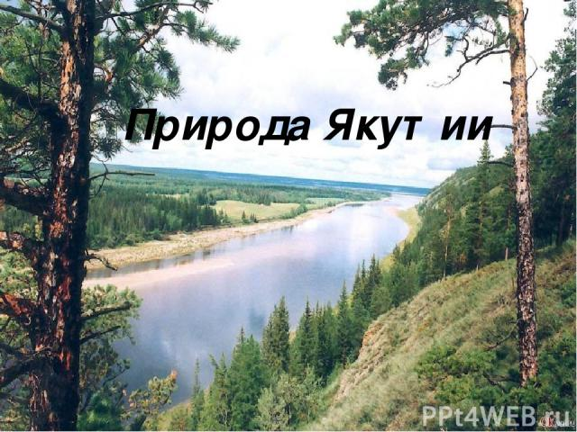 Природа Якутии