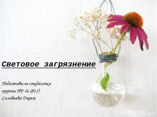 Световое загрязнение Подготовила студентка группы ПР-16 (811) Соловьева Дарья