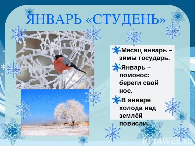 ЯНВАРЬ «СТУДЕНЬ» Месяц январь – зимы государь. Январь – ломонос: береги свой нос. В январе холода над землёй повисли.