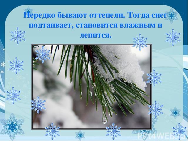 Нередко бывают оттепели. Тогда снег подтаивает, становится влажным и лепится.