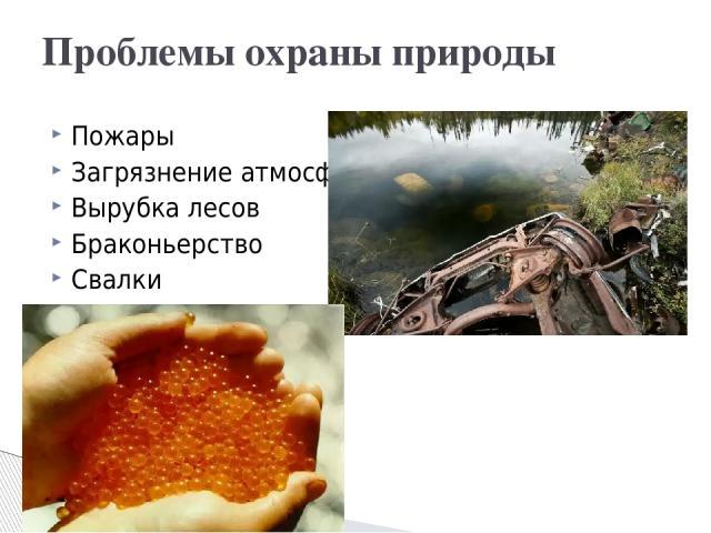 Пожары Загрязнение атмосферы Вырубка лесов Браконьерство Свалки Проблемы охраны природы