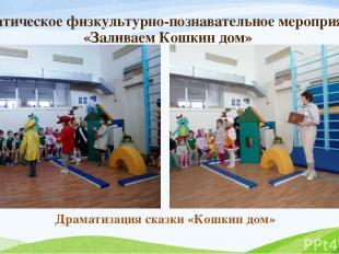 Тематическое физкультурно-познавательное мероприятие «Заливаем Кошкин дом» Драма