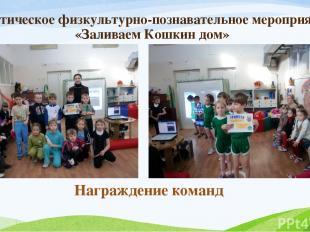 Тематическое физкультурно-познавательное мероприятие «Заливаем Кошкин дом» Награ