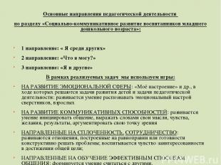 Основные направления педагогической деятельности по разделу «Социально-коммуника