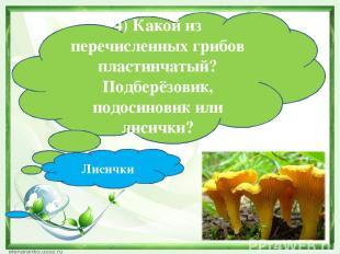 4) Какой из перечисленных грибов пластинчатый? Подберёзовик, подосиновик или лис