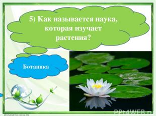5) Как называется наука, которая изучает растения? Ботаника