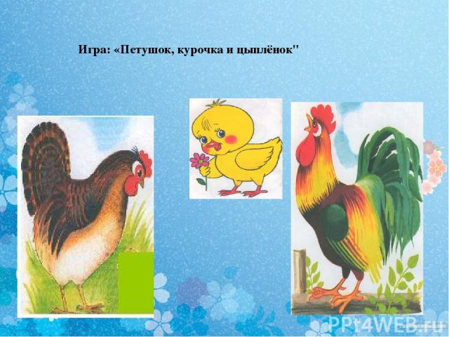 Игра: «Петушок, курочка и цыплёнок