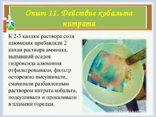Опыт 11. Действие кобальта нитрата