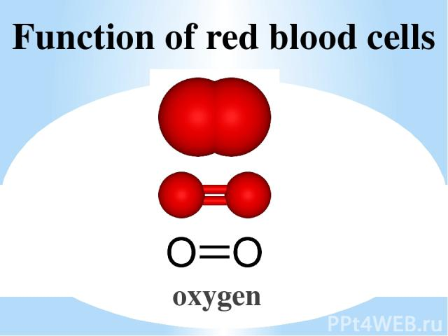 Function of red blood cells oxygen