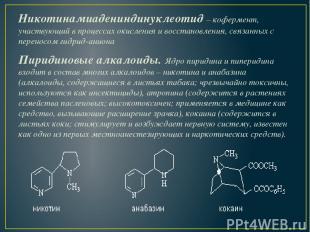 Никотинамиадениндинуклеотид–кофермент, участвующий в процессах окисления и вос