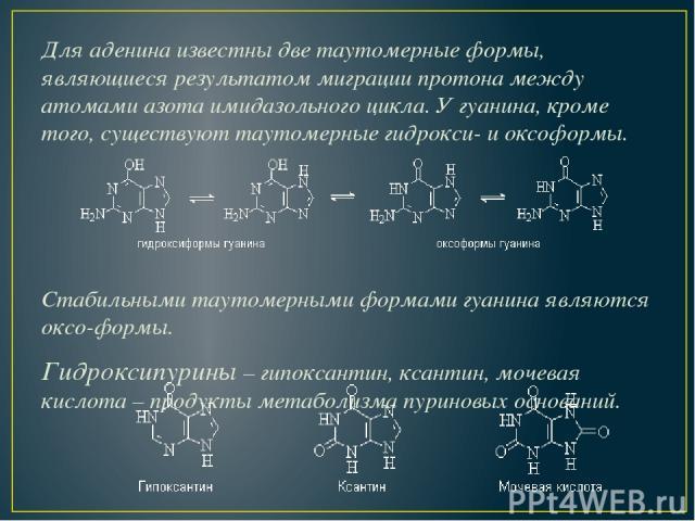 Для аденина известны две таутомерные формы, являющиеся результатом миграции протона между атомами азота имидазольного цикла. У гуанина, кроме того, существуют таутомерные гидрокси- и оксоформы. Стабильными таутомерными формами гуанина являются оксо-…