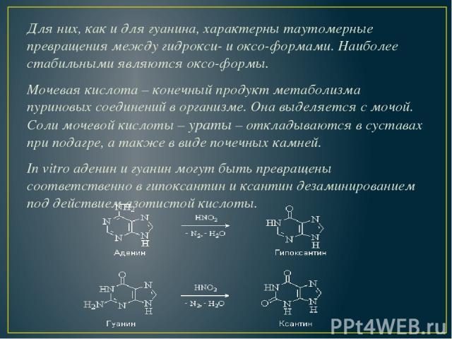 Для них, как и для гуанина, характерны таутомерные превращения между гидрокси- и оксо-формами. Наиболее стабильными являются оксо-формы. Мочевая кислота – конечный продукт метаболизма пуриновых соединений в организме. Она выделяется с мочой. Соли мо…
