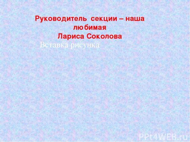 Руководитель секции – наша любимая Лариса Соколова