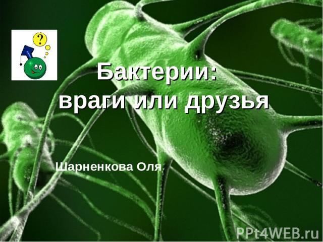 Бактерии: враги или друзья Шарненкова Оля