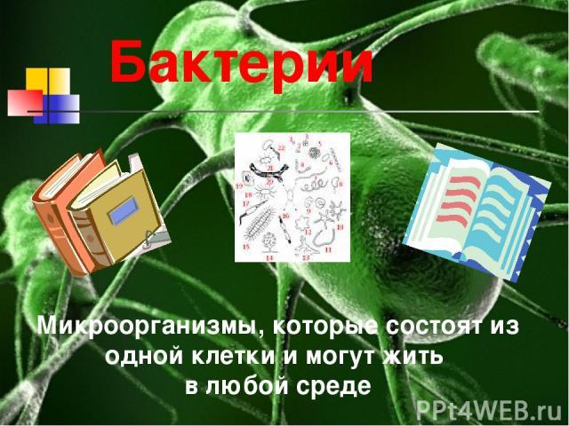 Бактерии Микроорганизмы, которые состоят из одной клетки и могут жить в любой среде