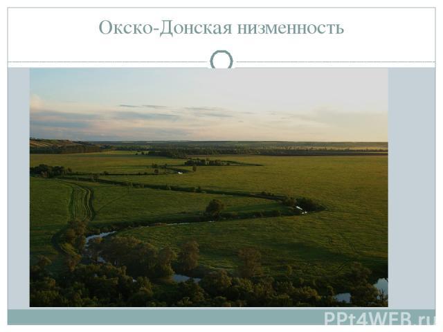 Окско-Донская низменность