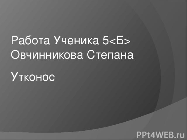 Утконо с Работа Ученика 5 Овчинникова Степана