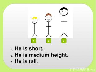 1 2 3 He is short. He is medium height. He is tall.