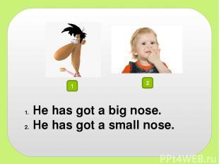 1 2 He has got a big nose. He has got a small nose.