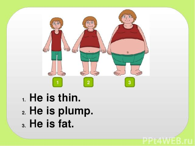 1 2 3 He is thin. He is plump. He is fat.