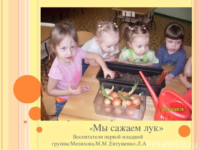 Творческий проект «Мы сажаем лук» Воспитатели первой младшей группы:Мелихова.М.М ,Евтушенко.Л.А