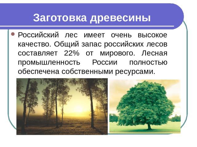 Заготовка древесины Российский лес имеет очень высокое качество. Общий запас российских лесов составляет 22% от мирового. Лесная промышленность России полностью обеспечена собственными ресурсами.