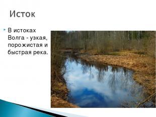В истоках Волга - узкая, порожистая и быстрая река.