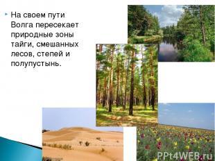 На своем пути Волга пересекает природные зоны тайги, смешанных лесов, степей и п