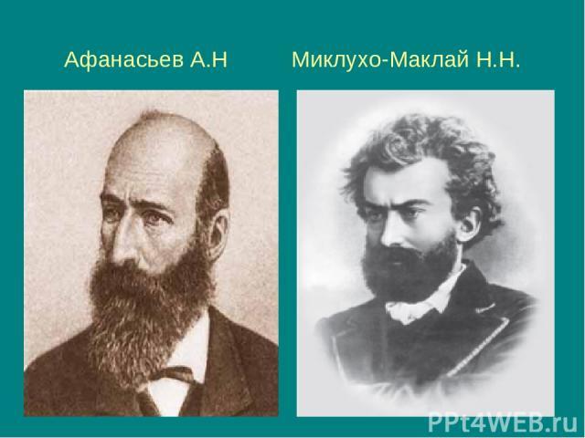 Афанасьев А.Н Миклухо-Маклай Н.Н.