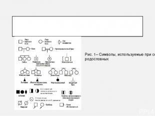 Рис. 1– Символы, используемые при составлении родословных