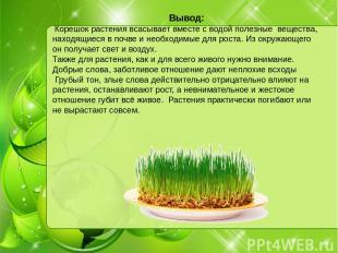 Вывод: Корешок растения всасывает вместе с водой полезные вещества, находящиеся