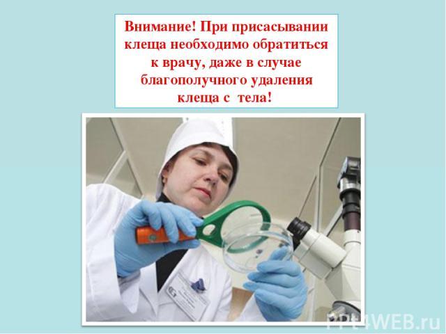 Внимание!При присасывании клеща необходимо обратиться к врачу, даже в случае благополучного удаления клеща с тела!