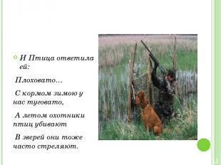 И Птица ответила ей: Плоховато… С кормом зимою у нас туговато, А летом охотники