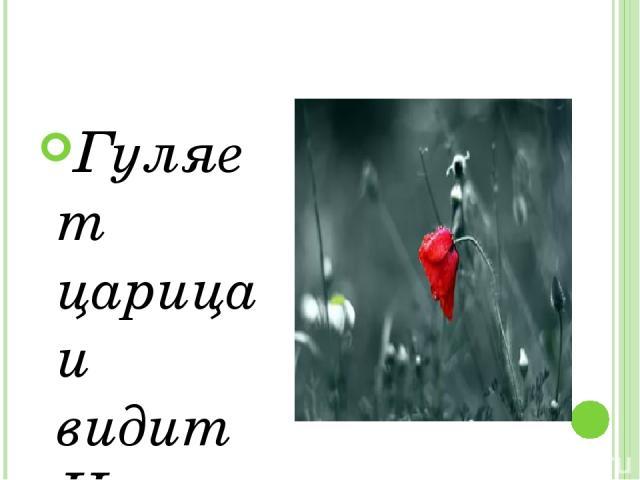 Гуляет царица и видит Цветок Он очень красив, Но увы, одинок.  Царица: Ты что же один на полянке грустишь? ЗАПЛАКАЛ ЦВЕТОК  Царица: Что с тобою, малыш? И грустно вздыхая, Смахнув слезы с глаз, Поведал цветок свой печальный рассказ