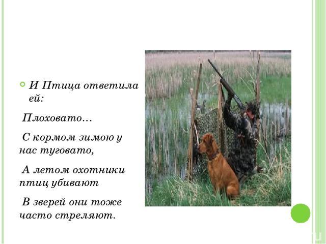 И Птица ответила ей: Плоховато… С кормом зимою у нас туговато, А летом охотники птиц убивают В зверей они тоже часто стреляют.