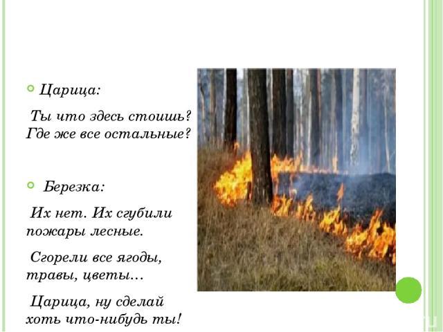 Царица: Ты что здесь стоишь? Где же все остальные? Березка: Их нет. Их сгубили пожары лесные. Сгорели все ягоды, травы, цветы… Царица, ну сделай хоть что-нибудь ты!