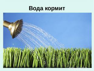 Вода кормит