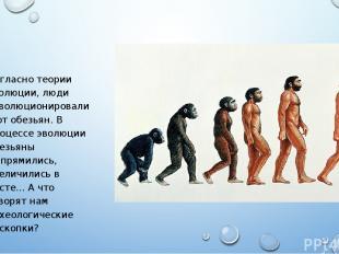 Согласно теории эволюции, люди «эволюционировали» от обезьян. В процессе эволюци