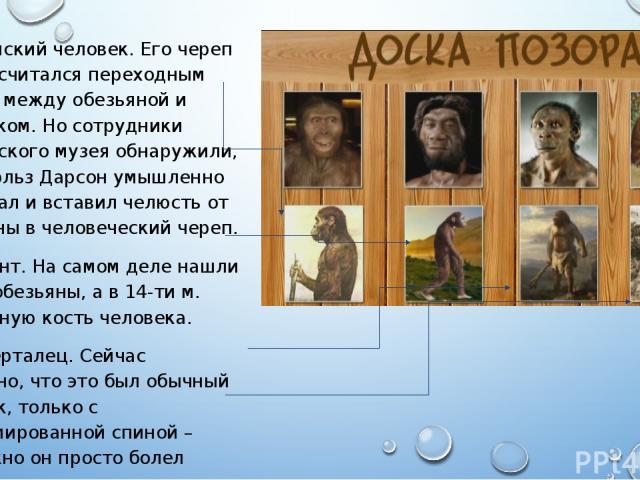 Пилдамский человек. Его череп 35 лет считался переходным звеном между обезьяной и человеком. Но сотрудники британского музея обнаружили, что Чарльз Дарсон умышленно подогнал и вставил челюсть от обезьяны в человеческий череп. Петикант. На самом деле…