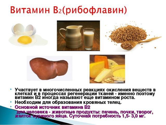 Участвует в многочисленных реакциях окисления веществ в клетках и в процессах регенерации тканей - именно поэтому витамин B2 иногда называют еще витамином роста. Необходим для образования кровяных телец. Основной источник витамина B2 для человека - …