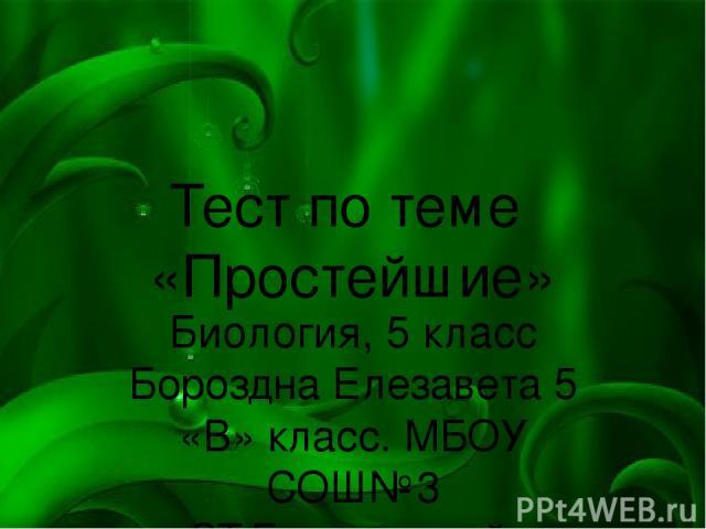 Тест по теме «Простейшие» Биология, 5 класс Бороздна Елезавета 5 «В» класс. МБОУ СОШ№3 СТ.Березанской.